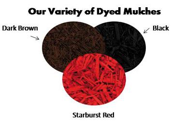 mulch_dyed